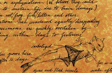 Frankenstein Catfish